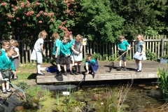 Pond dipping 1